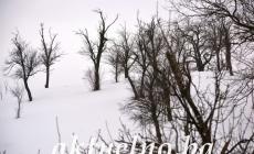 U BiH oblačno vrijeme sa snijegom i kišom