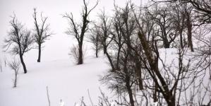 Prognoza:U BiH danas snijeg ili susnježica