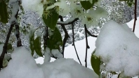 Snijeg i minusi do petka
