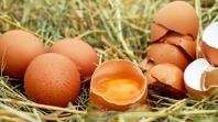 Ured za veterinarstvo: U BiH nema nedozvoljenih količina fipronila u jajima