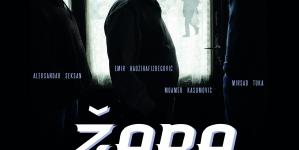 "Film ""Žaba"" 15. i 16. novembra u Kino sali BKC-a Živinice"