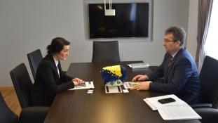 Priprema za realizaciju aktivnosti Delegacije EU u BiH