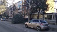 Snažna bura u Mostaru lomila stabla i blokirala normalno funkcionisanje grada