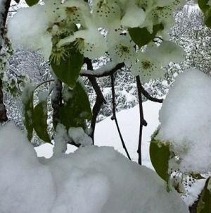Snijeg u Krajini