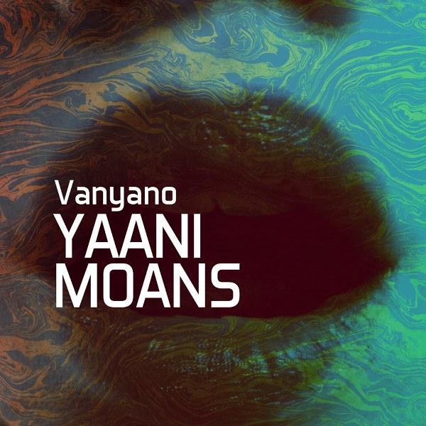 Tuzlanski producent i dj elektronske muzike Vanyano objavio prvi autorski album pod nazivom Yaani Moans