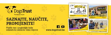 DOGS TRUST: Besplatna sterilizacija za vlasničke pse od septembra i u Tuzlanskom kantonu