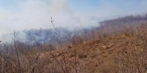 Vatrogasci se bore protiv požara na Husinu