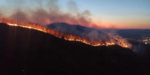 Lokaliziran veliki požar u Tuzli: Nije bilo povrijeđenih
