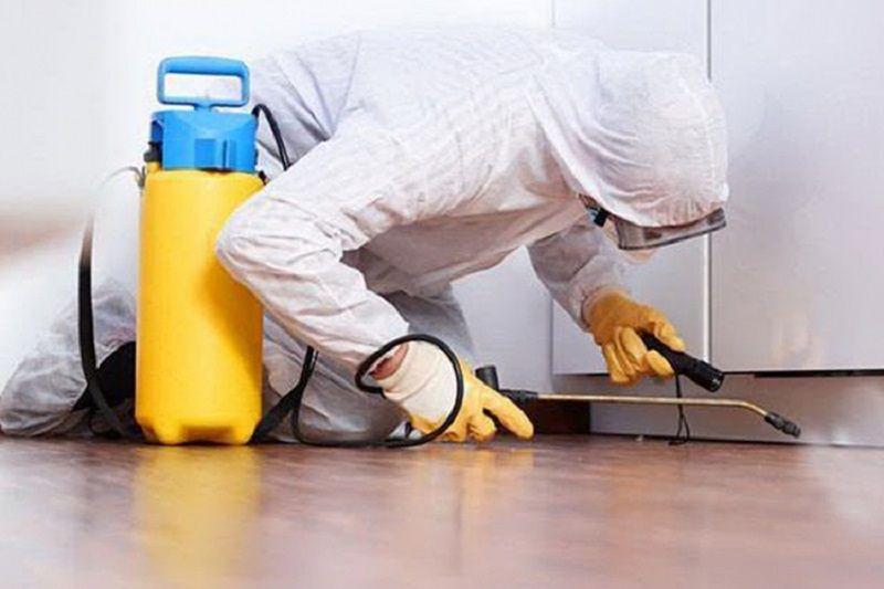 INZ: Važno je znati – dezinfekcija, dezinsekcija i deratizacija kao preventivne mjere
