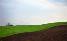 Obavještenje poljoprivrednim proizvođačima za predaju zahtjeva za ostvarivanje prava na novčanu podršku za proljetnu sjetvu u 2020. godini