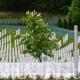 Fazlić: Za ukop 11. jula u Potočarima spremni posmrtni ostaci osam žrtava