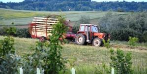 Mogućnosti za produženje sezonskog zapošljavanja u poljoprivredi