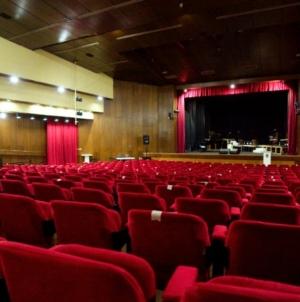 Jvni poziv: Teatar fest Živinice 2021.