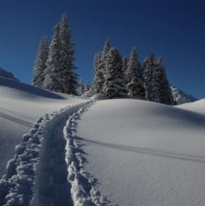 Beč – Novi projekt za upozorenja na prirodne nepogode